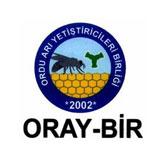 15_oray_bir