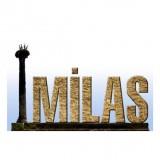 2011_89260_milas